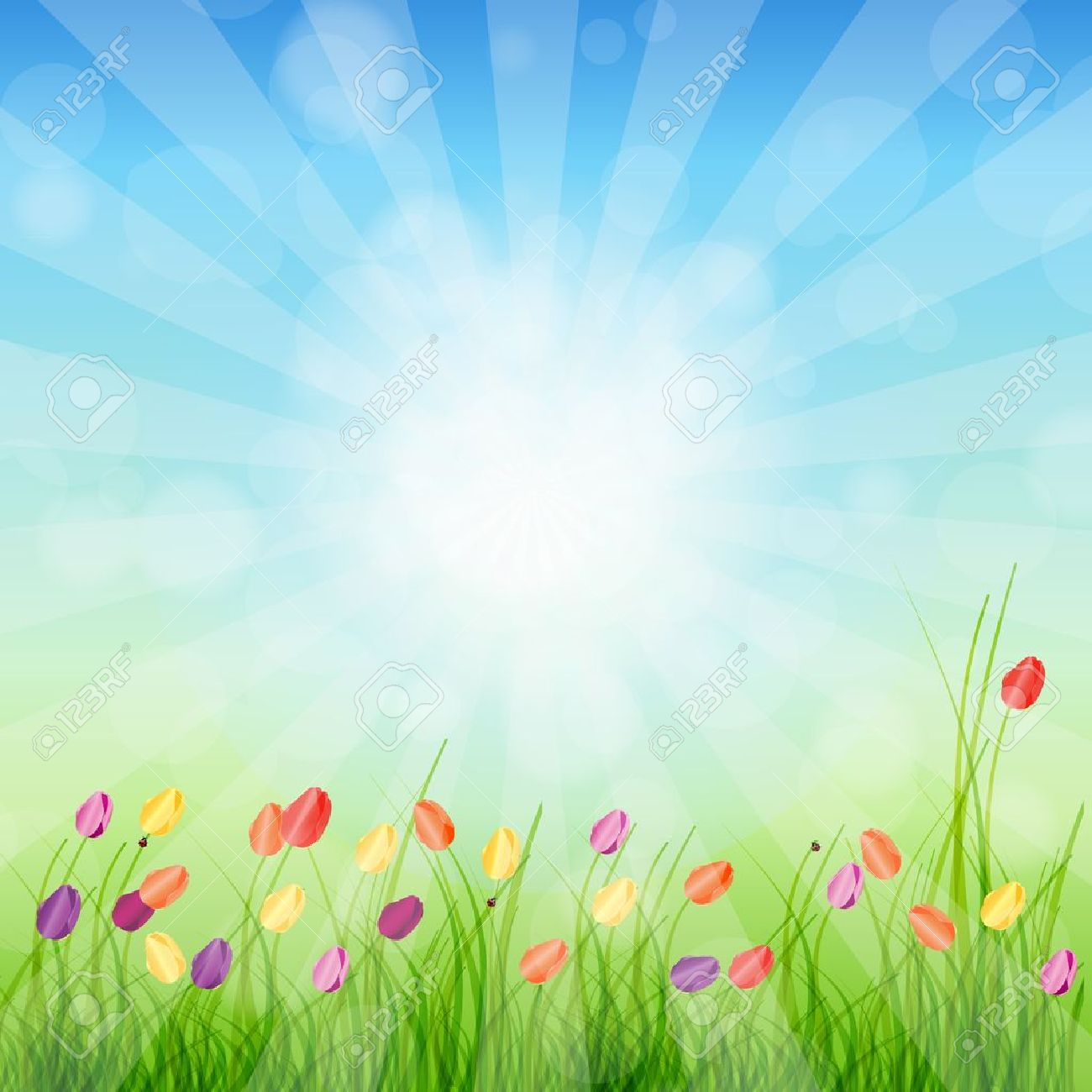 Summer Abstract Background with grass and tulips against sunny sky illustration Stock Vector - 12909816