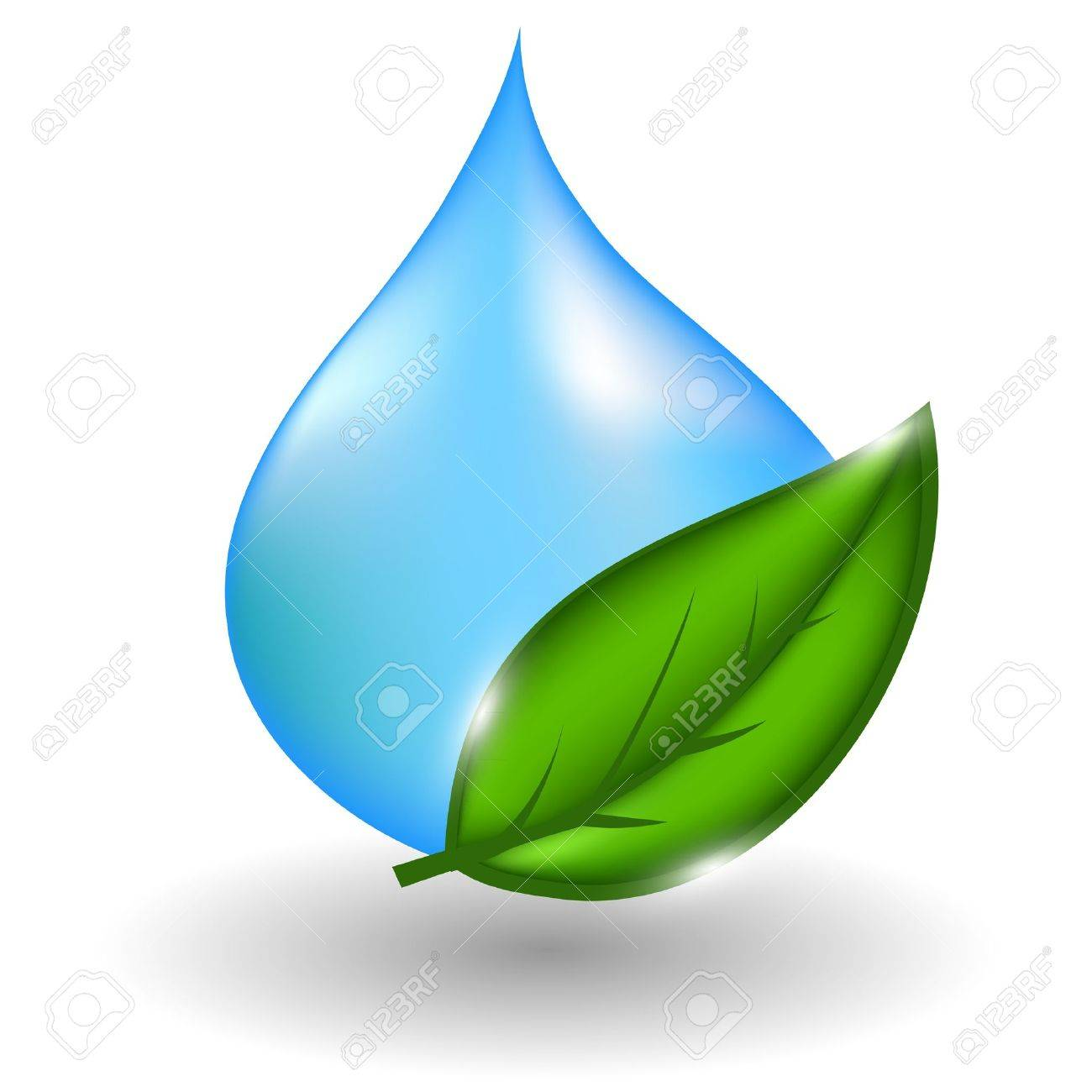 water drop with green leaves.illustration Stock Vector - 13657554