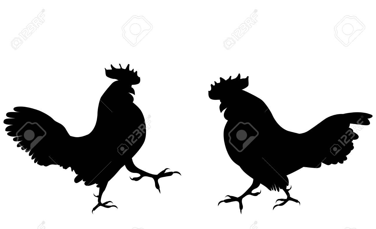 5fc2f61eebaa7 Dos gallos de pelea contra el fondo blanco. Ilustración vectorial Foto de  archivo - 83393228