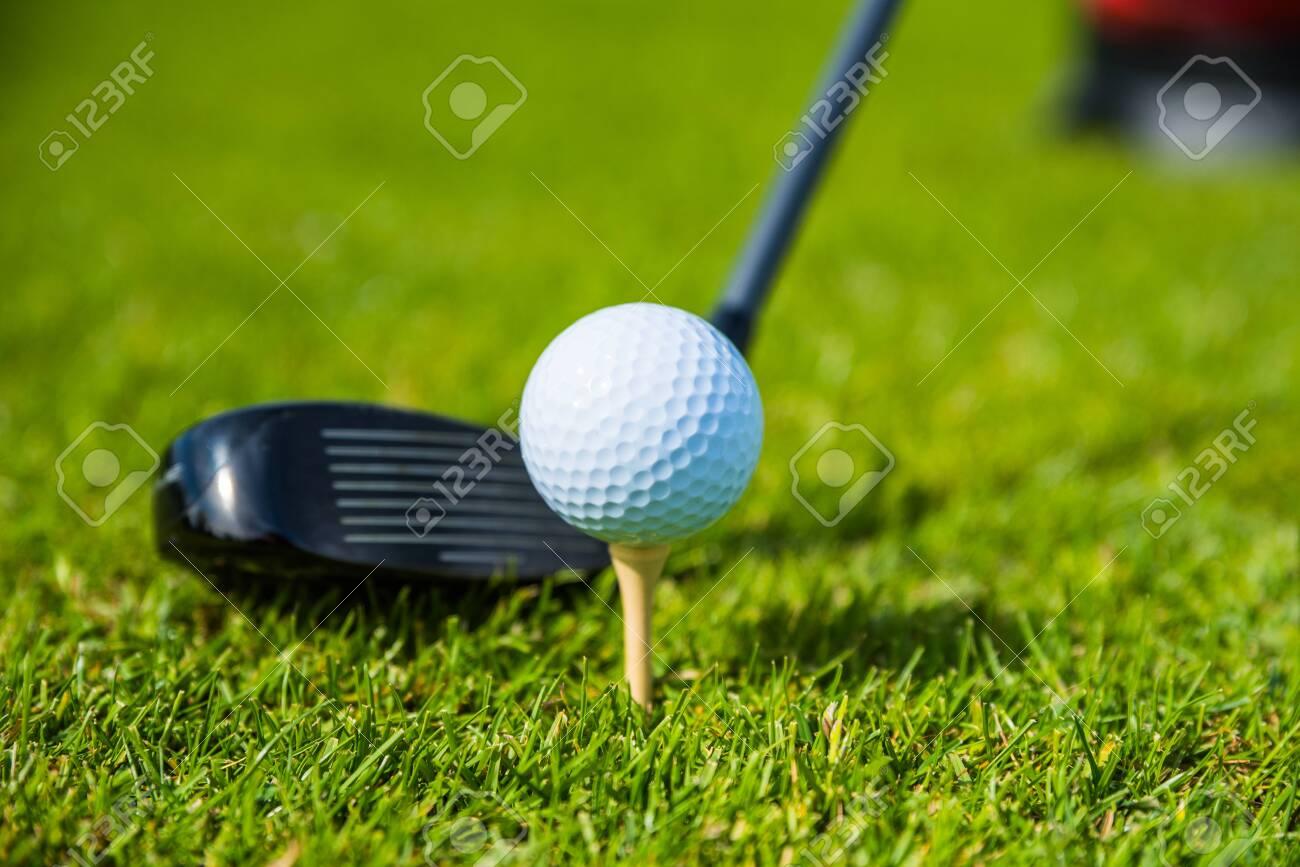 golf ball ang club on golf green grass natural fairway - 147632968