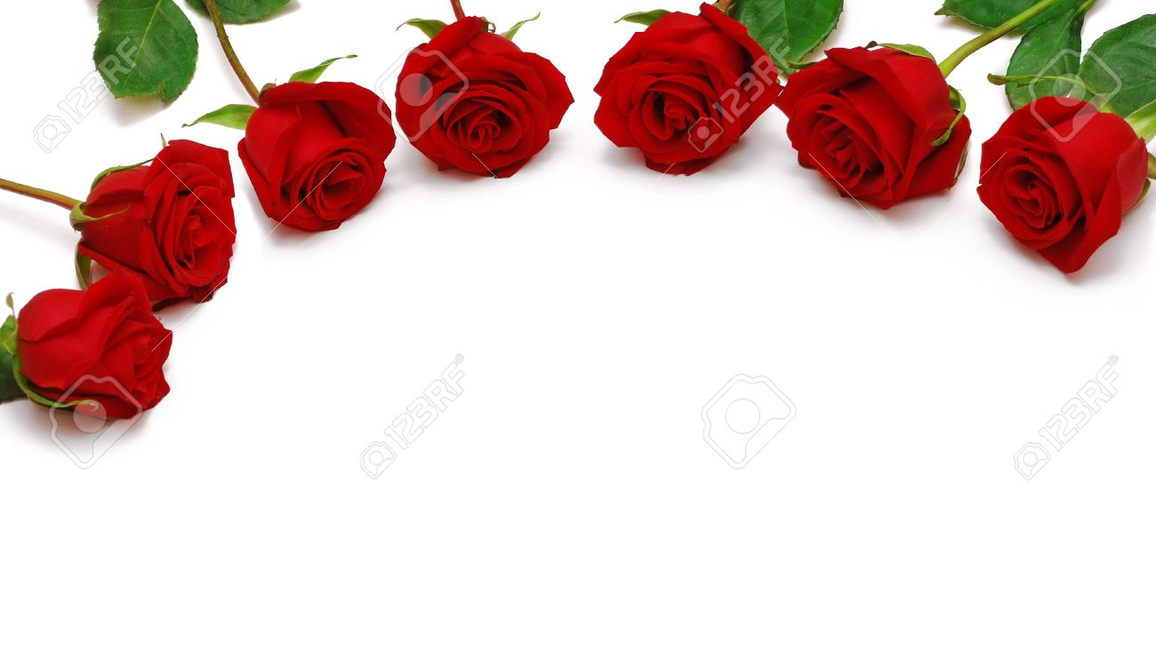 Red Roses For The Greetings Stock Photo Picture And Royalty Free