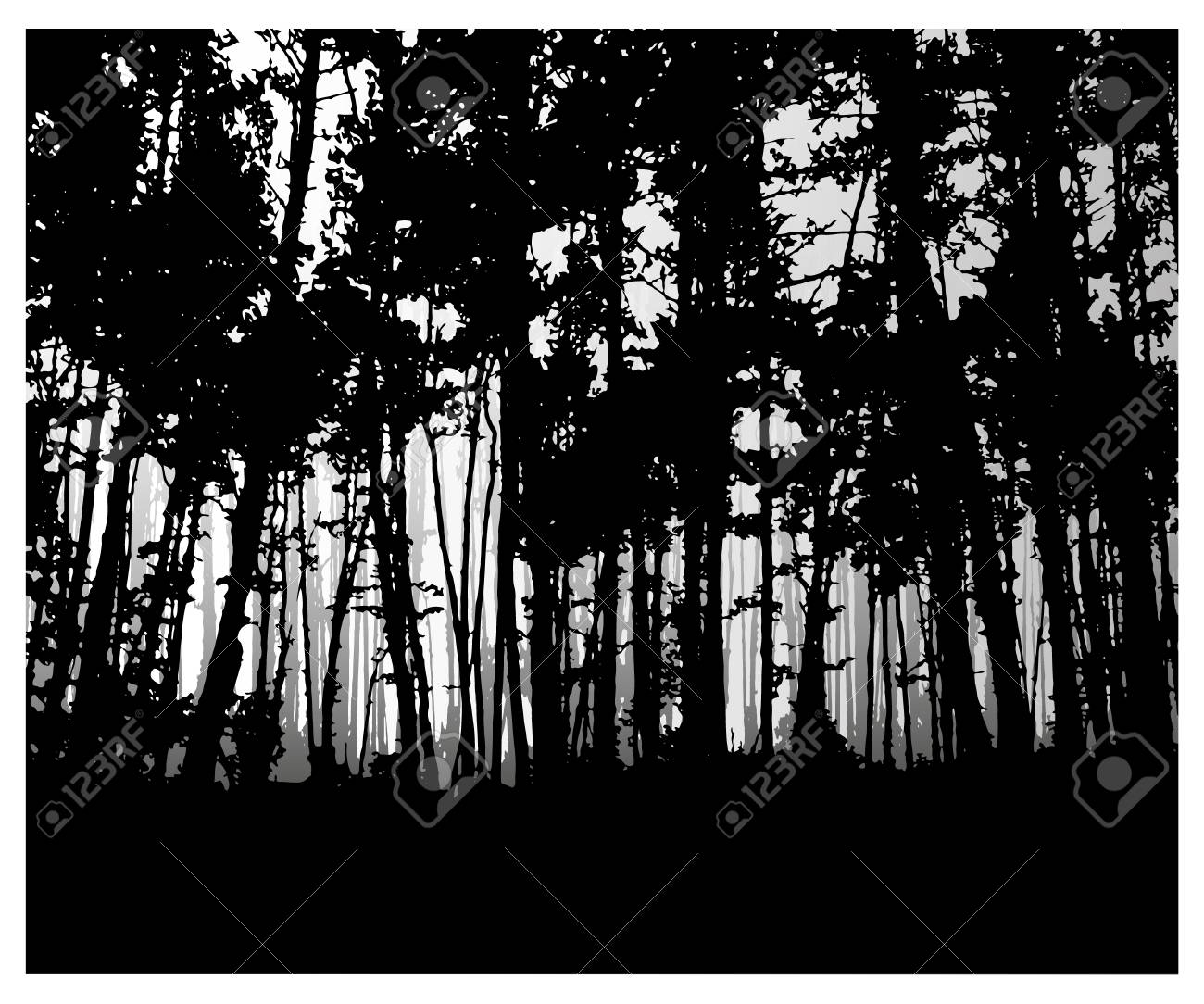 Stock photo woodland eco banner classic black and white tones can be used as poster badge wallpaper backdrop background