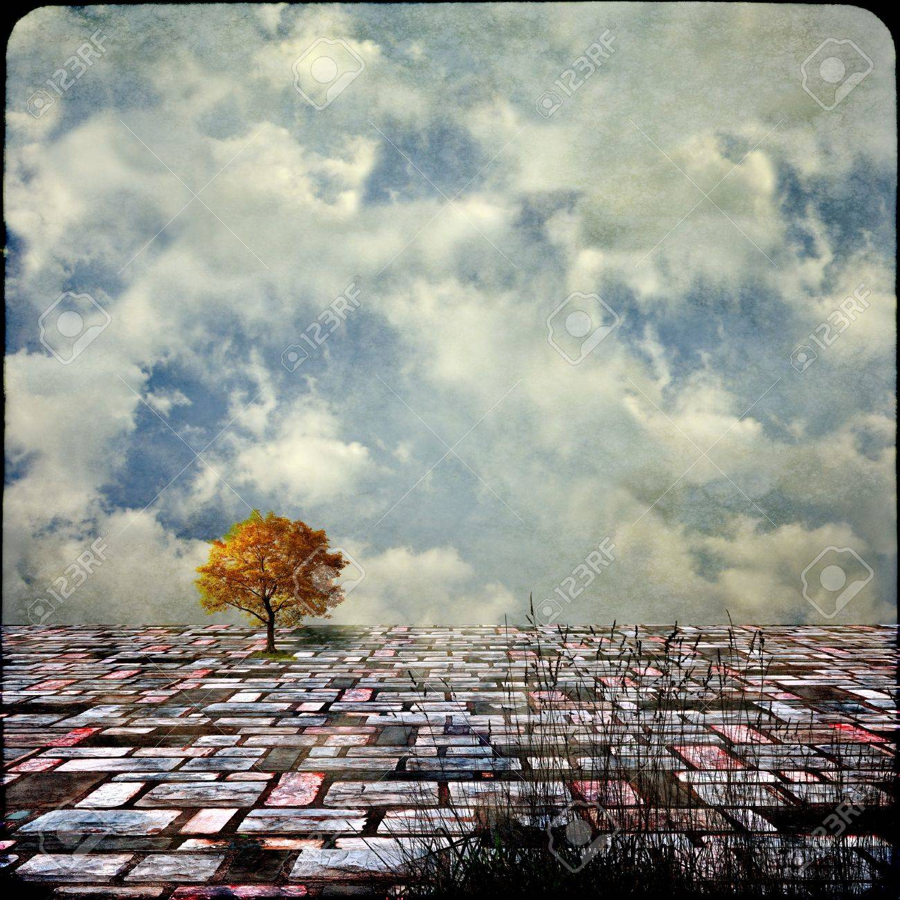 Surreal landscapes with single tree Stock Photo - 15028682