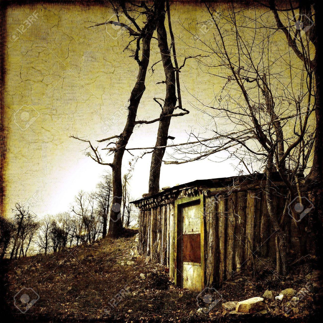 Piccolo rifugio nella foresta Archivio Fotografico - 16378373