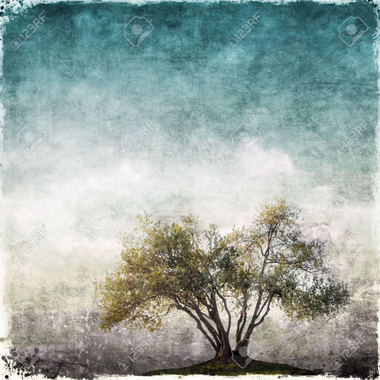 paesaggio Grunge con singolo albero Archivio Fotografico - 53406719