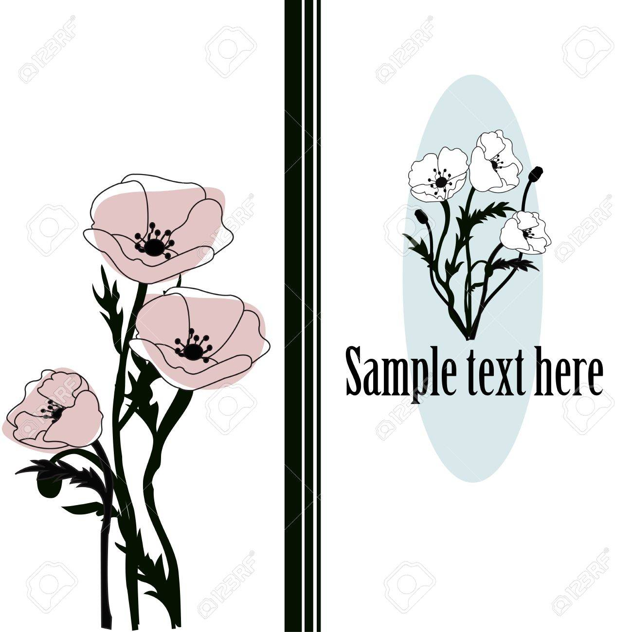 Bouquet from poppies on a white background Stock Vector - 13327310
