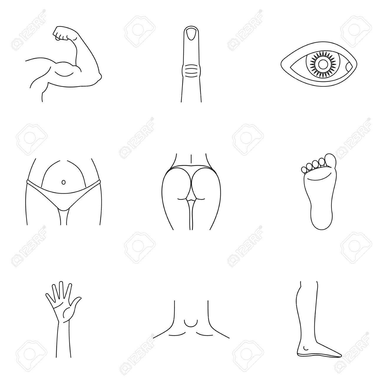 Menschliche Körper Symbole Gesetzt. Umriss Illustration Von 9 ...