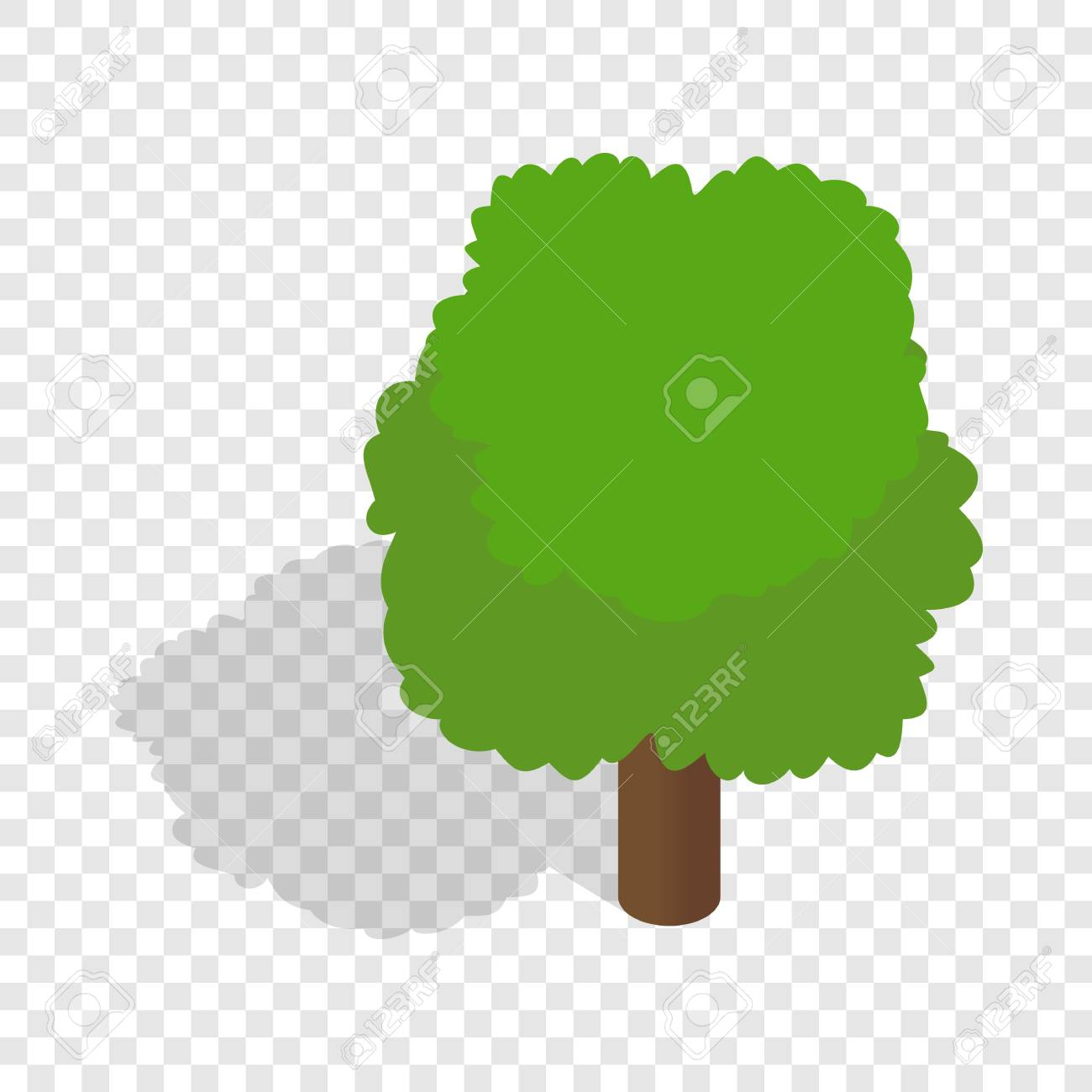Fluffy Tree Isometric Icon 3d On A Transparent Background Vector Illustration Stock