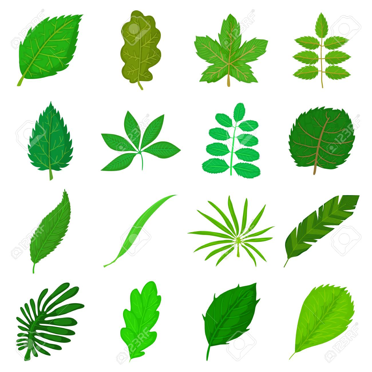 Green Leafs Icons Set Cartoon Style Royalty Free Cliparts Vectors And Stock Illustration Image 79190199