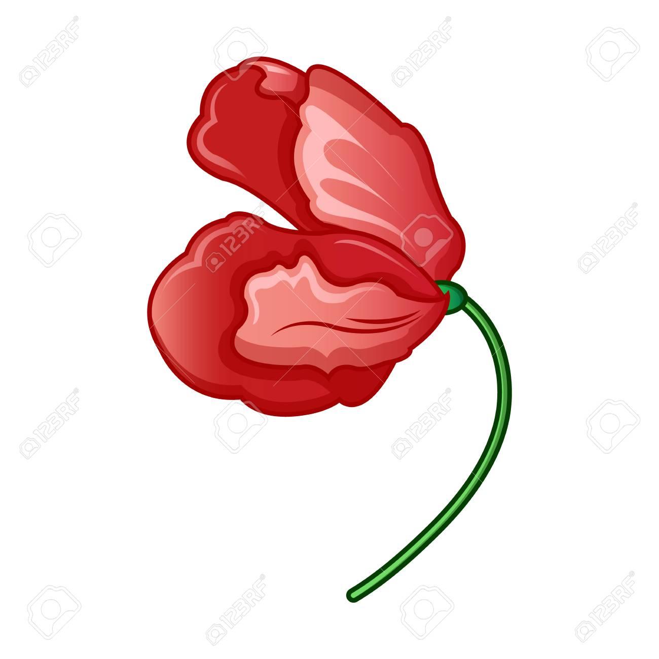 Wild Poppy Flower Icon Cartoon Of Wild Poppy Flower Vector Icon For