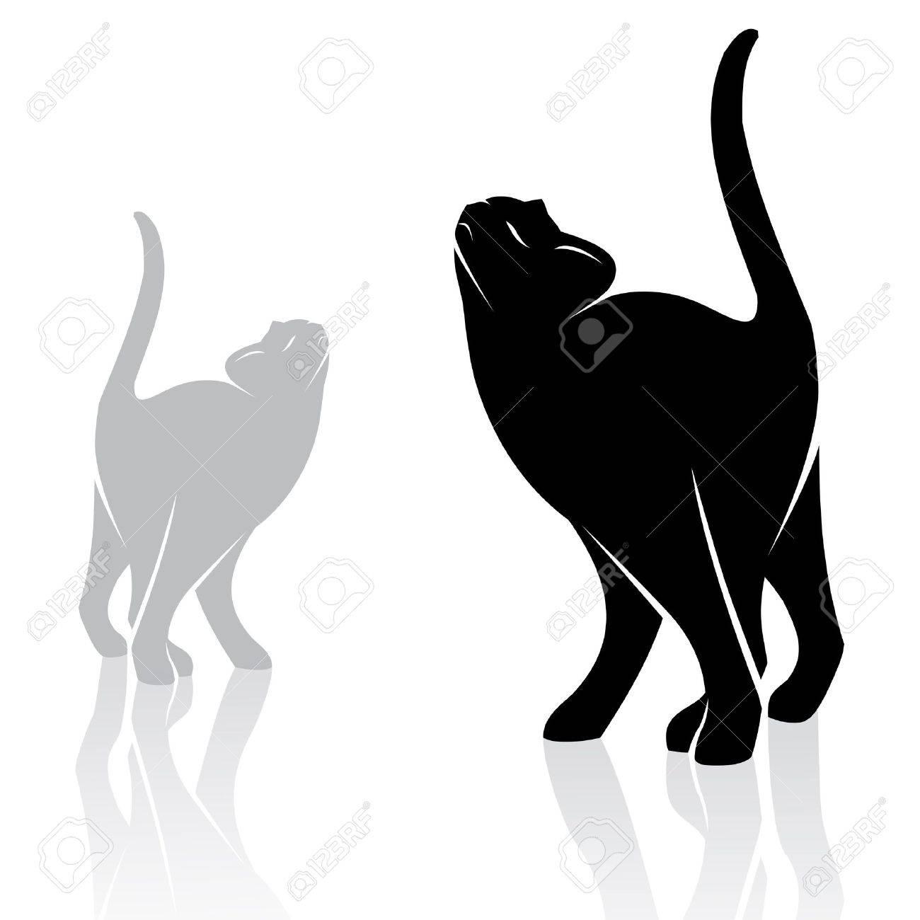 imagen de un gato en el fondo blanco Foto de archivo - 16746871
