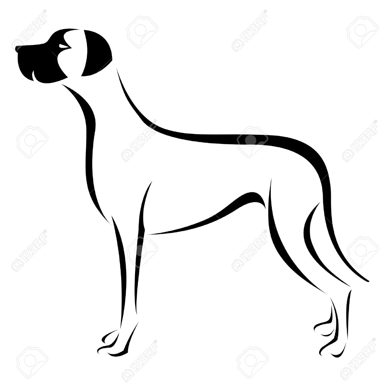 an dog  great dane  on white background Stock Vector - 17681972