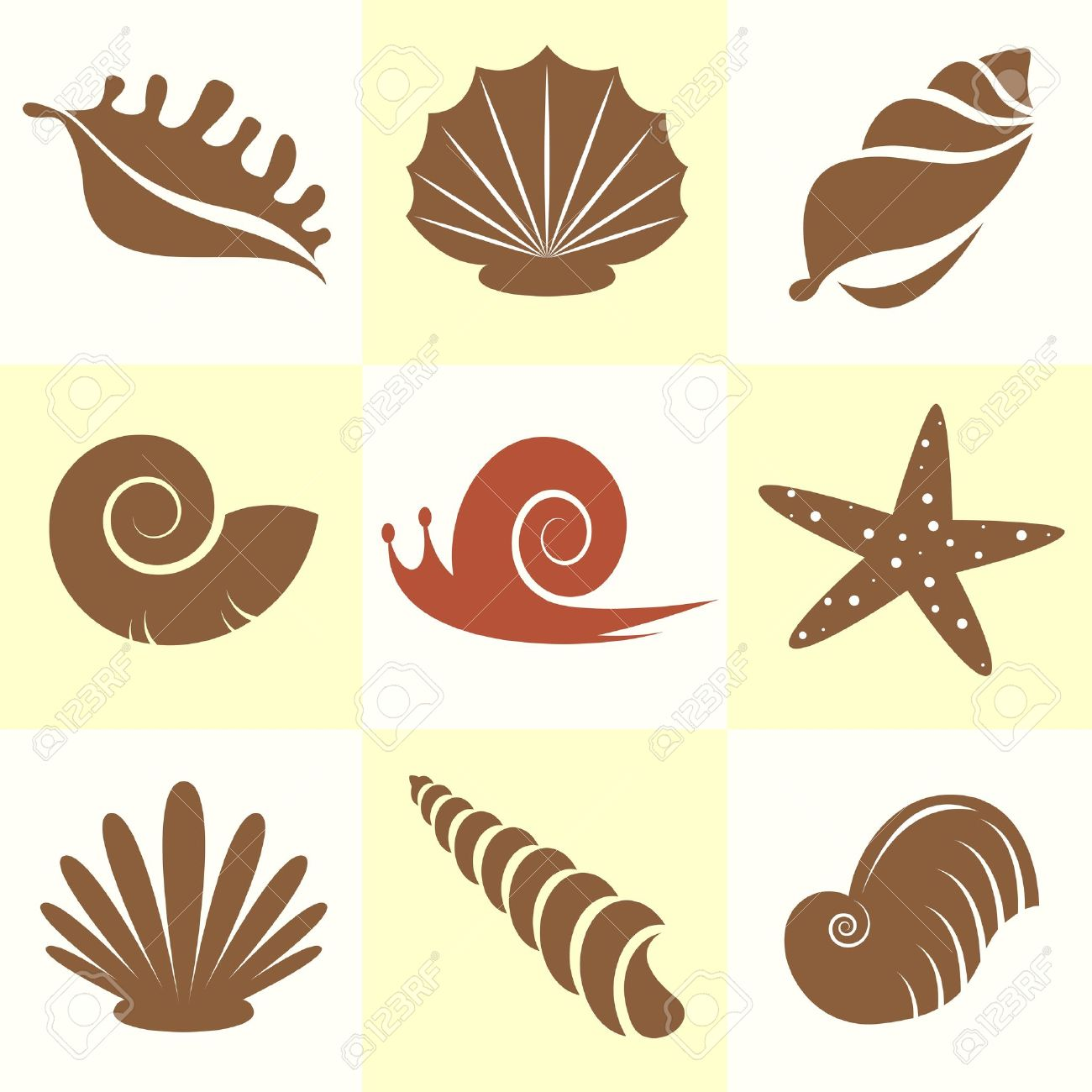 vector collection of sea shells and snail royalty free cliparts