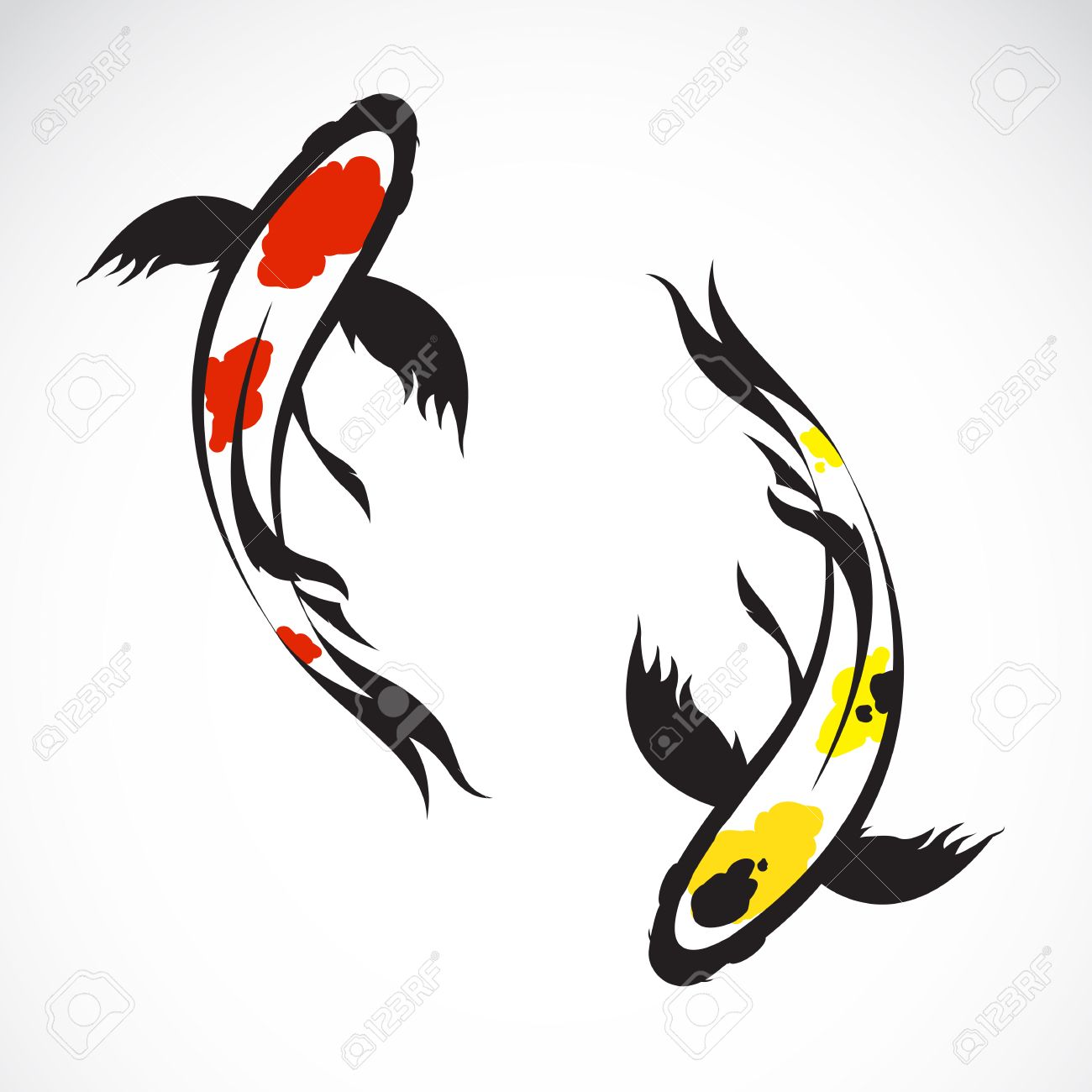 vector image of an carp koi on white background royalty free rh 123rf com koi fish vector art chinese koi fish vector