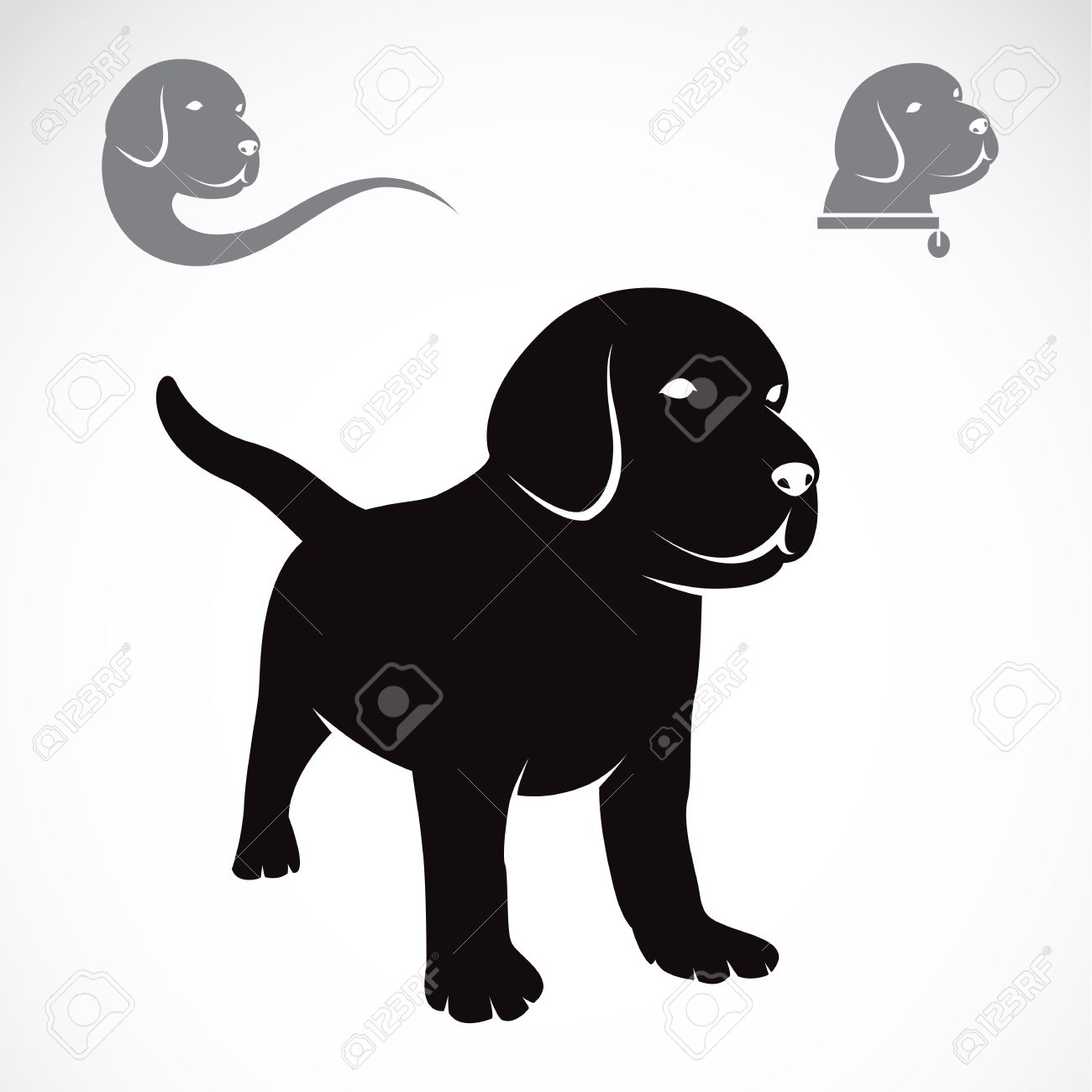 illustration image of an labrador puppies on white background
