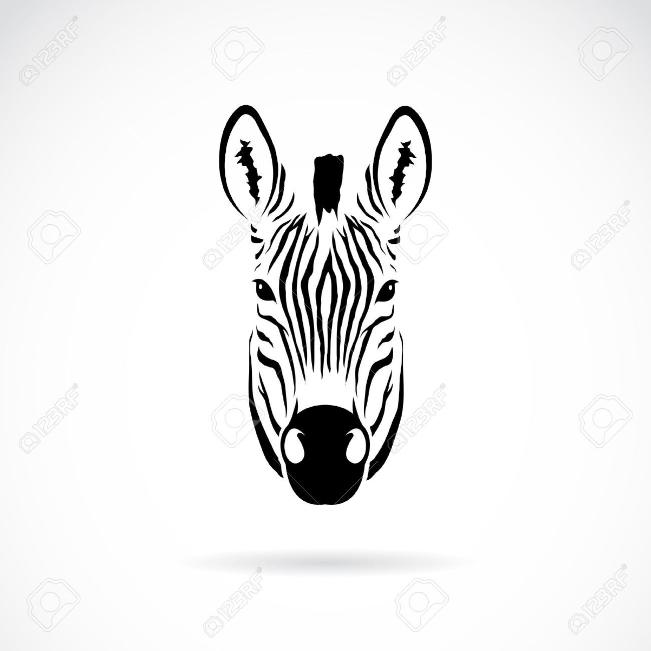 vector image of an zebra head on white background royalty free