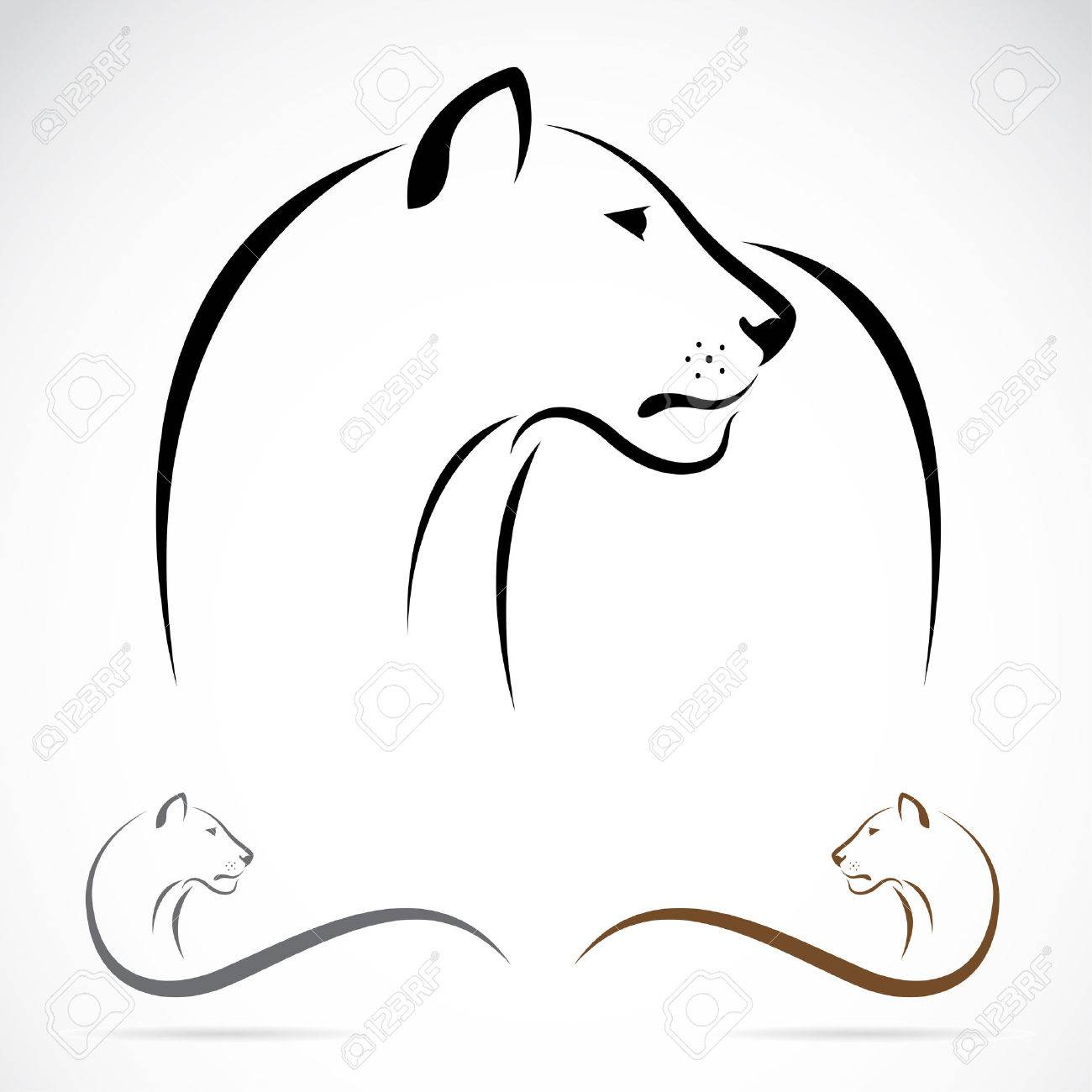 Vector image of an female lion on white background. Stock Vector - 26589664