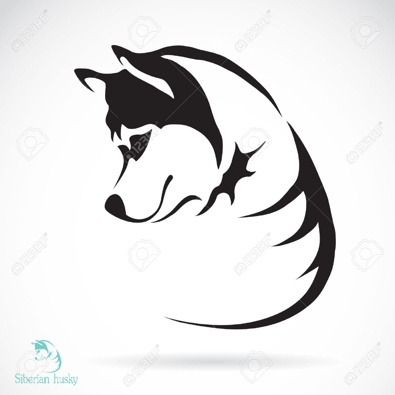 vector image of a dog siberian husky on white background royalty
