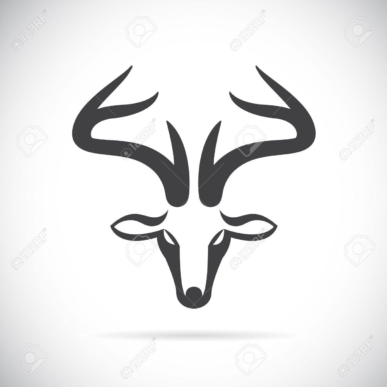 Buck Tte Cerf Cerfs Dessin Cornes Bois Oreilles Imgdessins