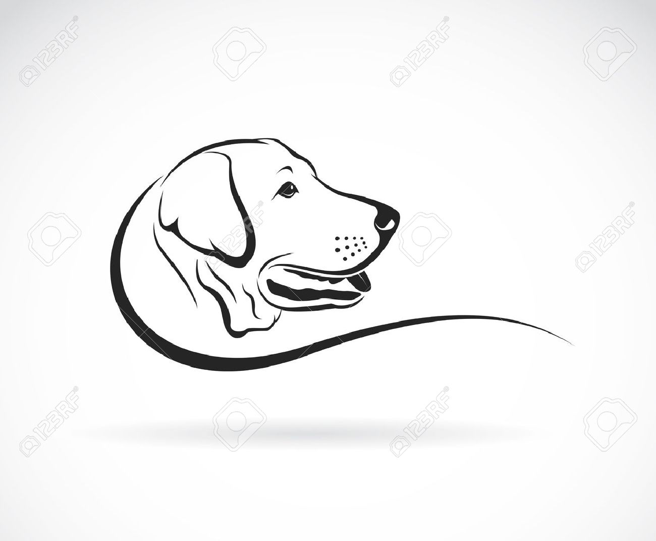 Vector Image Of An Dog Labrador Head On White Background Royalty