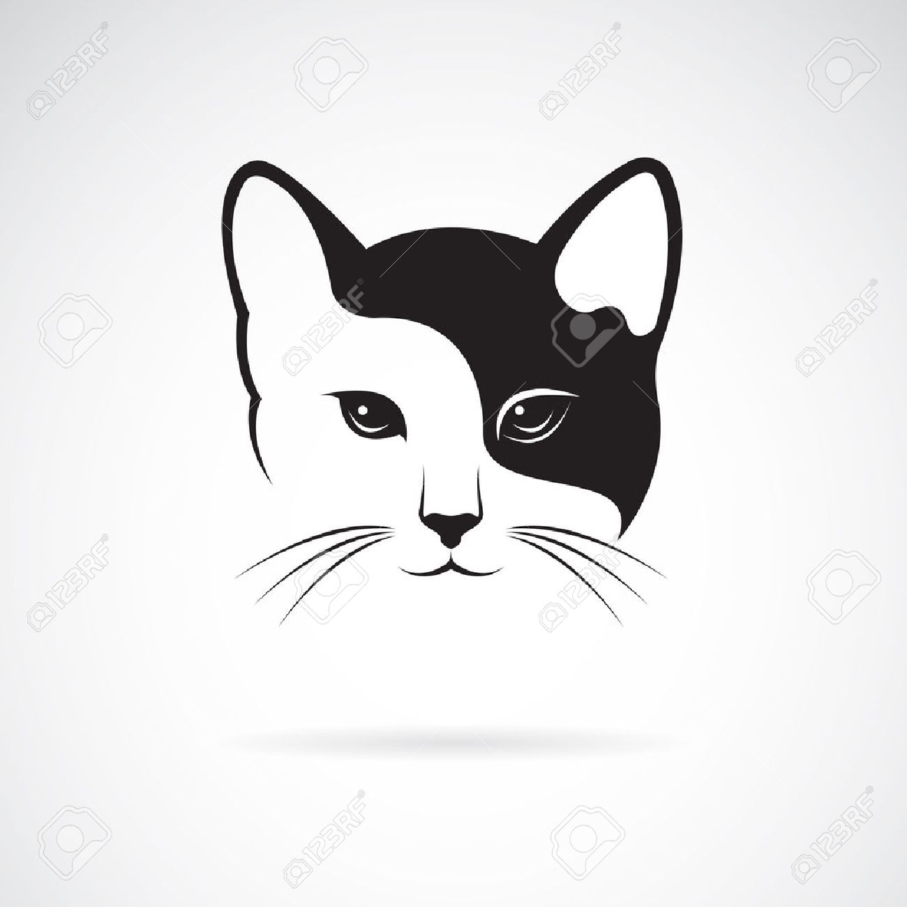 Vector image of an cat face design on white background. - 55619539