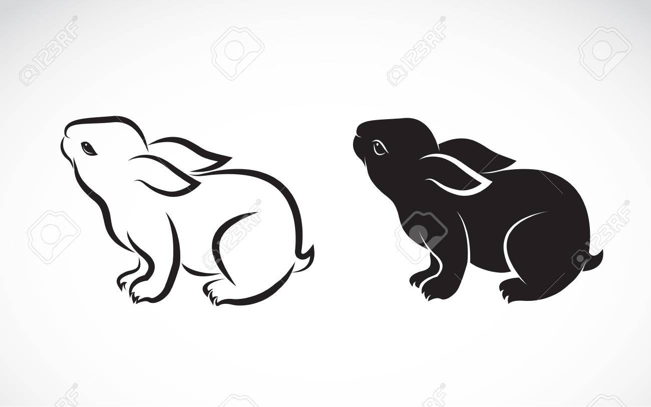 rabbit design on white background - 56334252