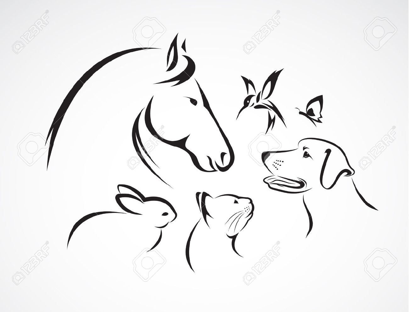 group of pets horse dog cat bird butterfly rabbit isolated