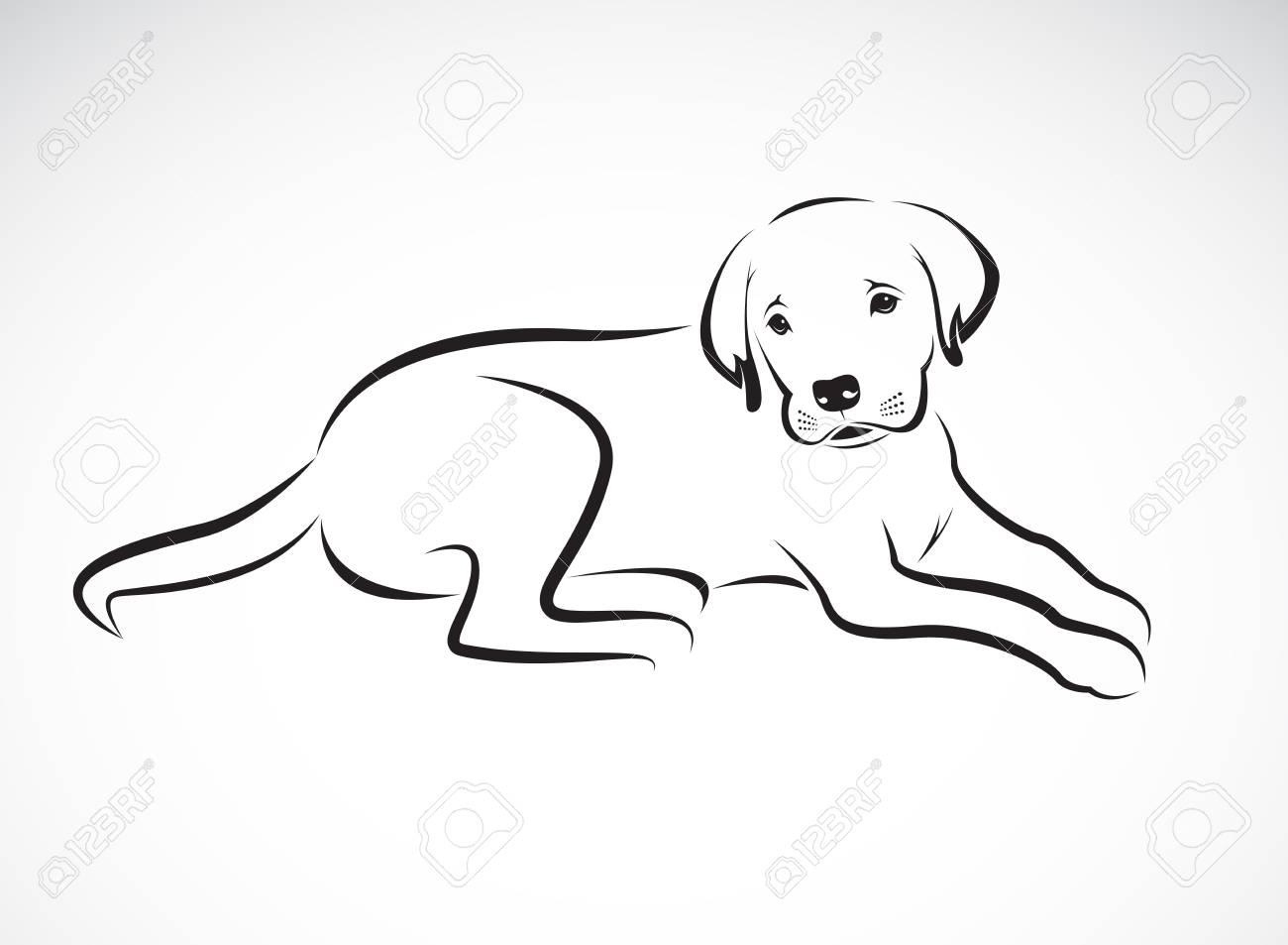 Vector De Un Perro Labrador En El Fondo Blanco Mascota Animal Ilustración Vectorial En Capas Editable Fácil