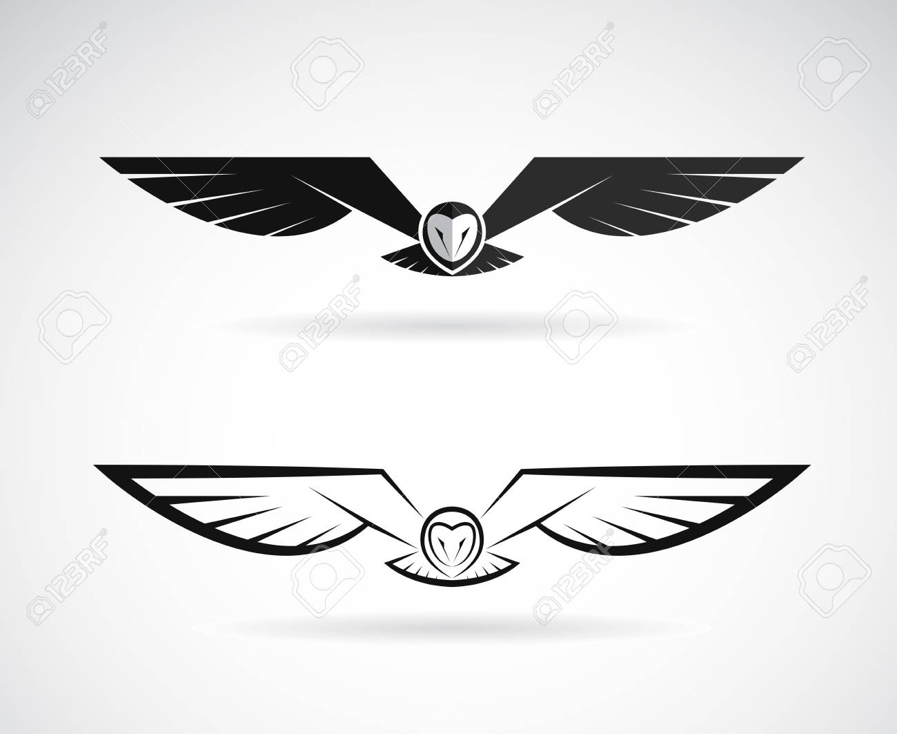 Vector of an owl design on a white background. - 97117076