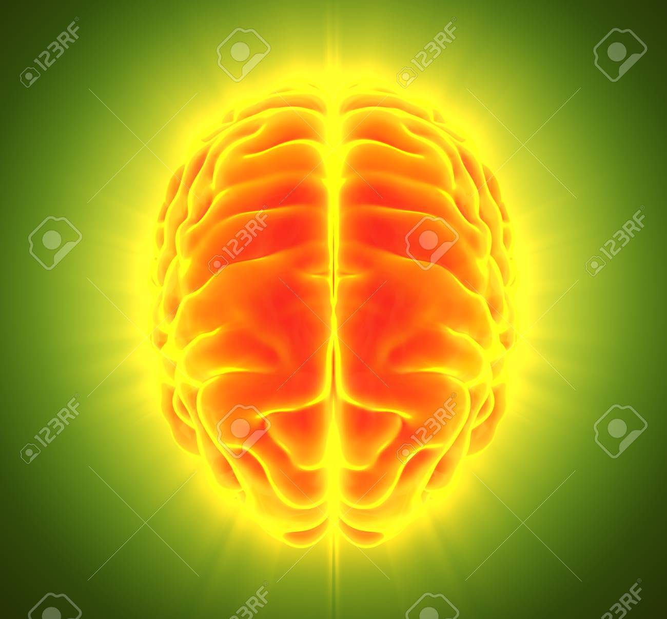 3D Illustration Of Bright Orange Brain, Anatomy And Medical Concept ...