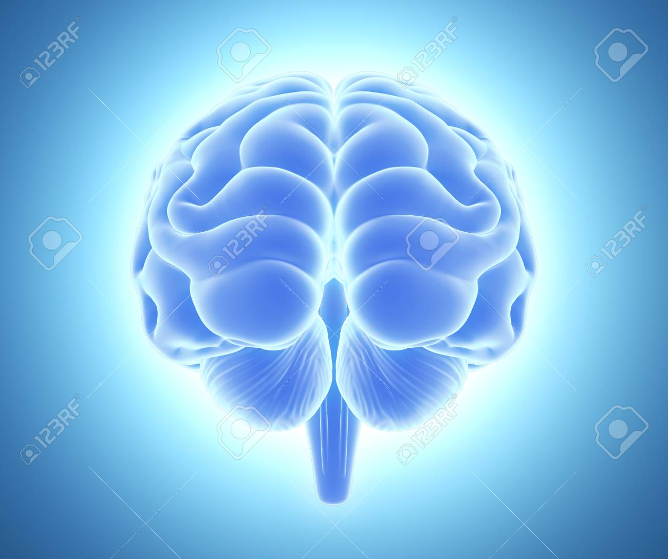 3D Illustration Of Bright Blue Brain, Anatomy And Medical Concept ...