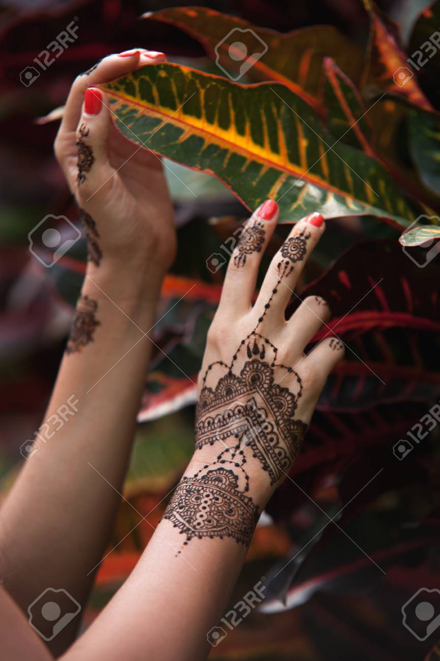 Female Hands With Henna Tattoo Touching Beautiful Exotic Leaves