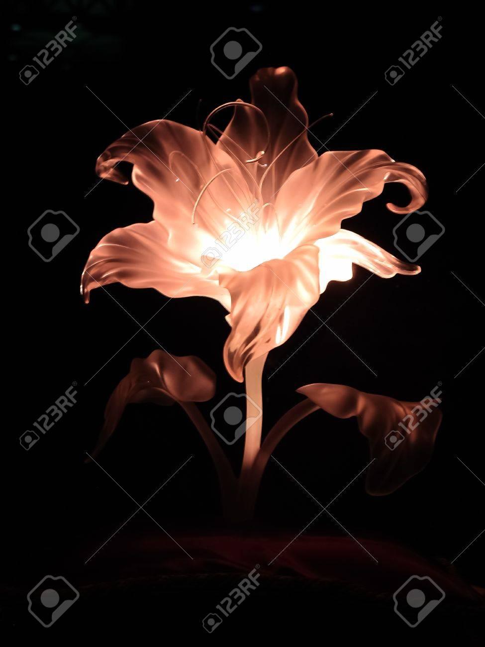 ラプンツェル S 魔法の花 の写真素材画像素材 Image 15540059