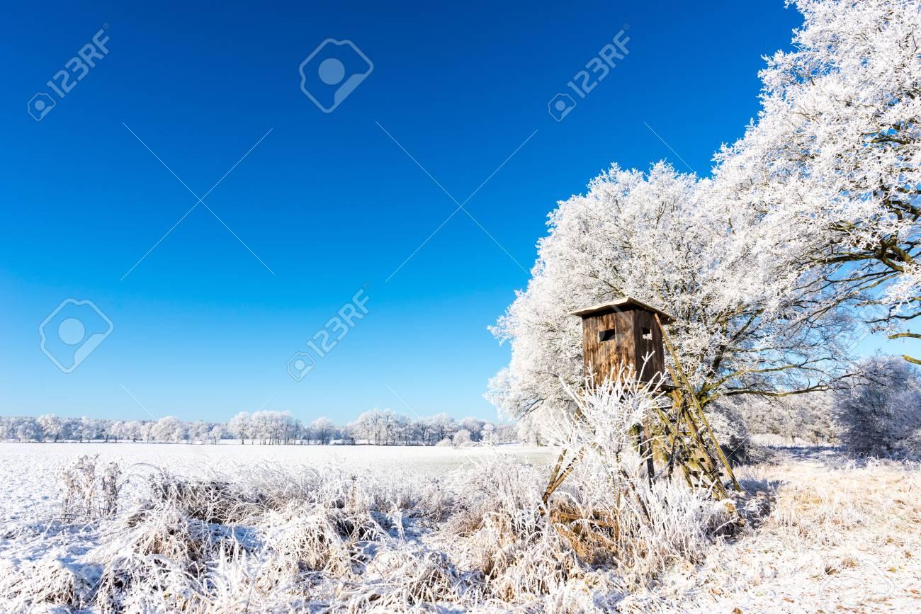 Horizontale foto met landschap van de de winterscène. de bruine