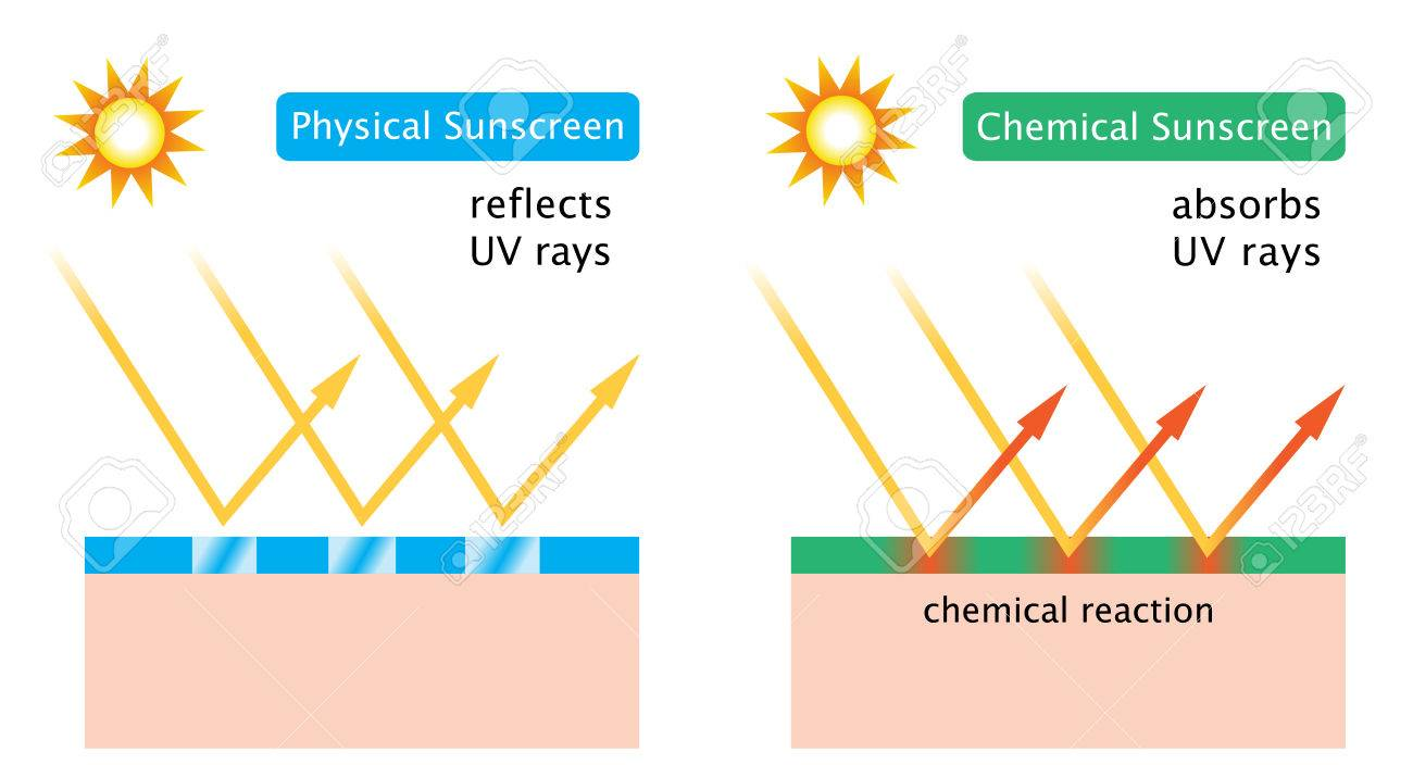 chemical sunscreen and physical sunscreen - 80797158