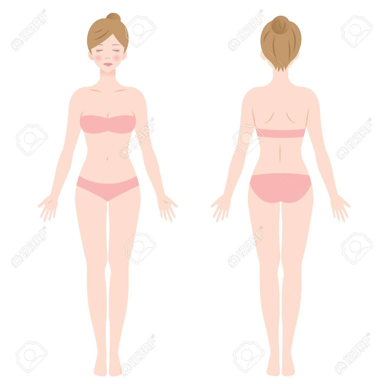 Vrouwelijk lichaam. voor en achteraanzicht. Geïsoleerde vectorillustratie.
