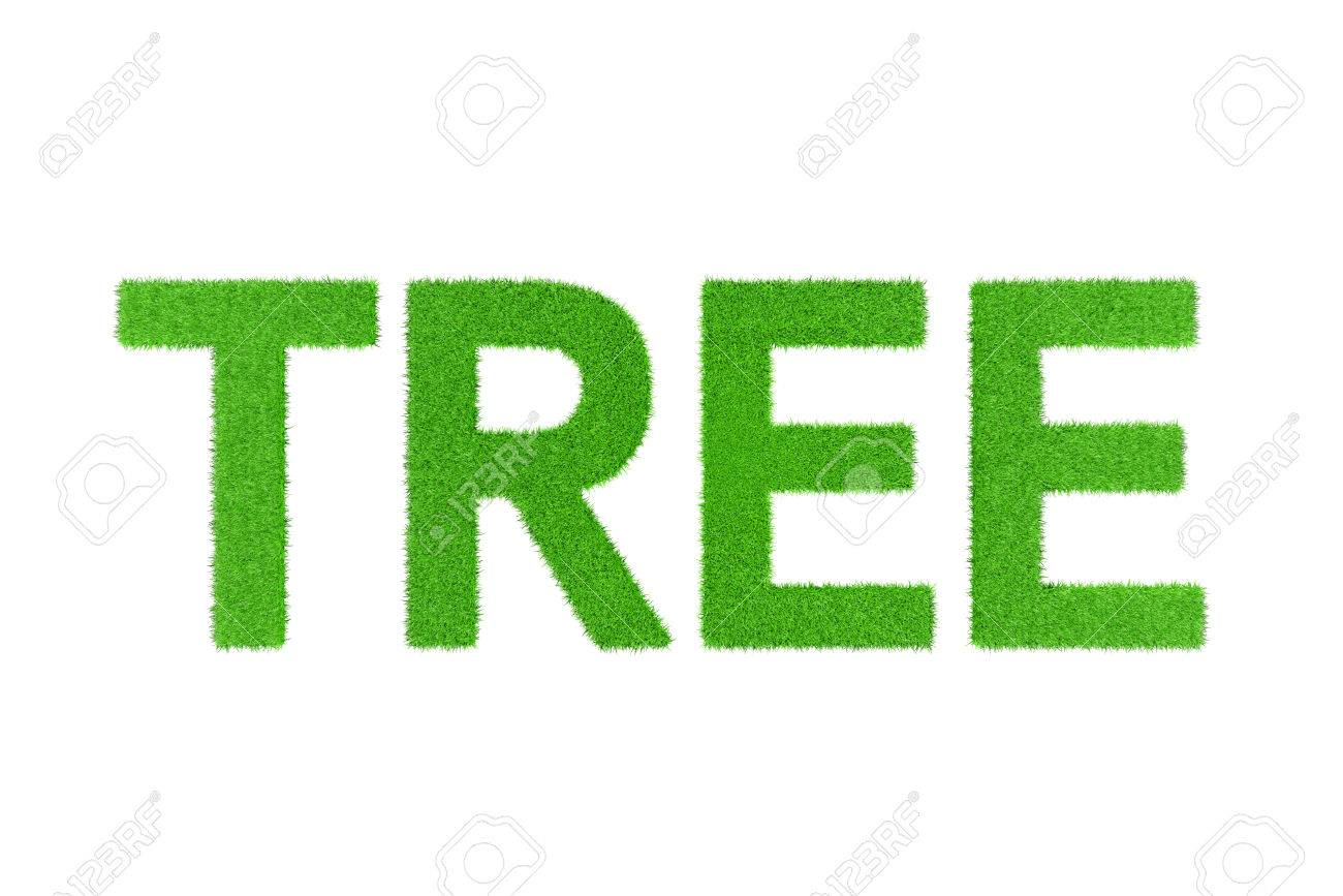 Frases En Inglés Verdes Palabras árbol