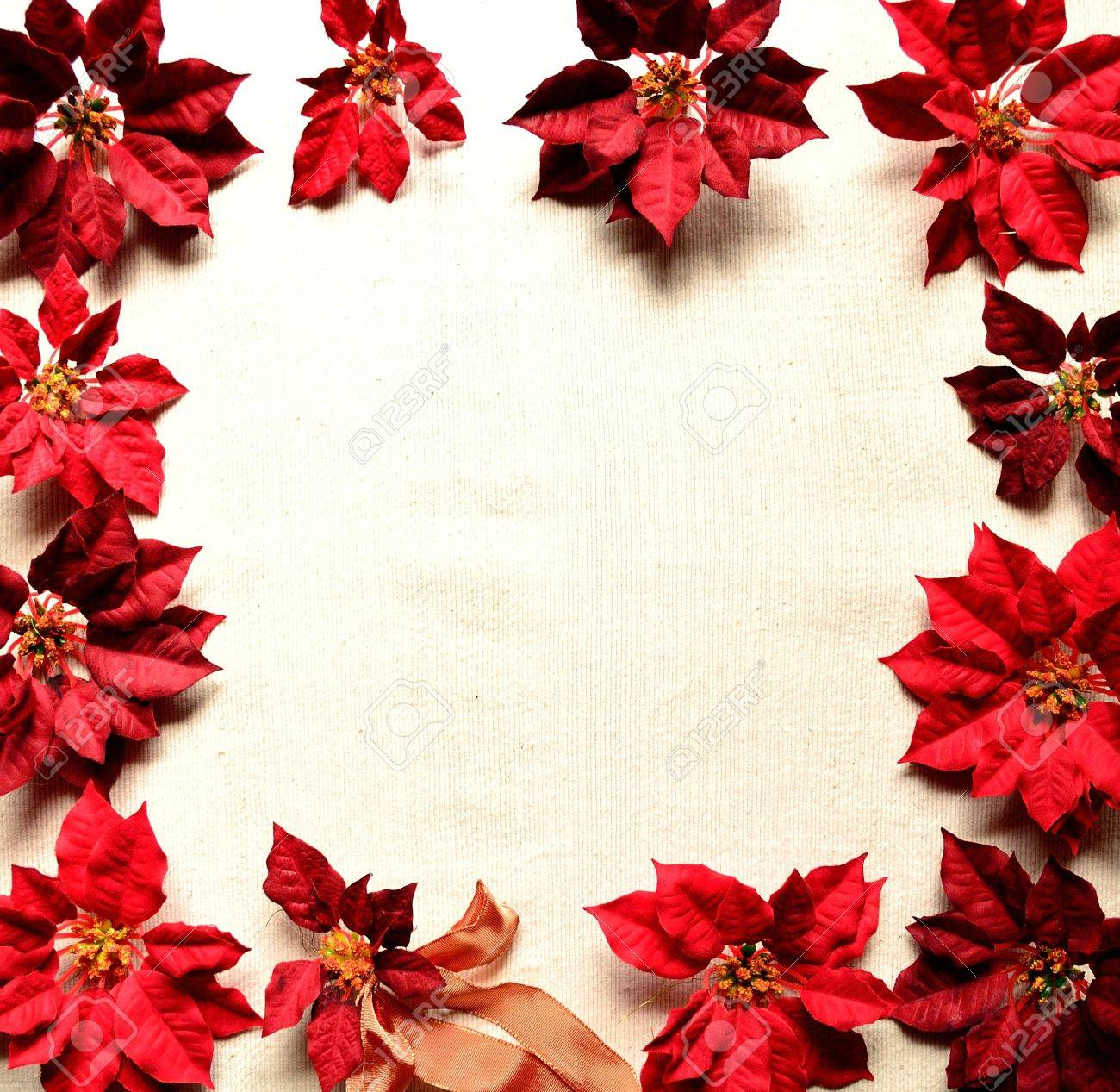 クリスマス ポインセチア赤フレーム ロイヤリティーフリーフォト