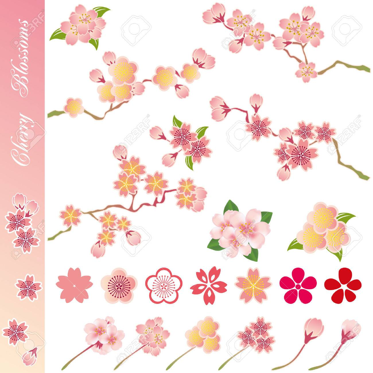 Cherry blossoms icons set. Illustration vector. Stock Vector - 8922077