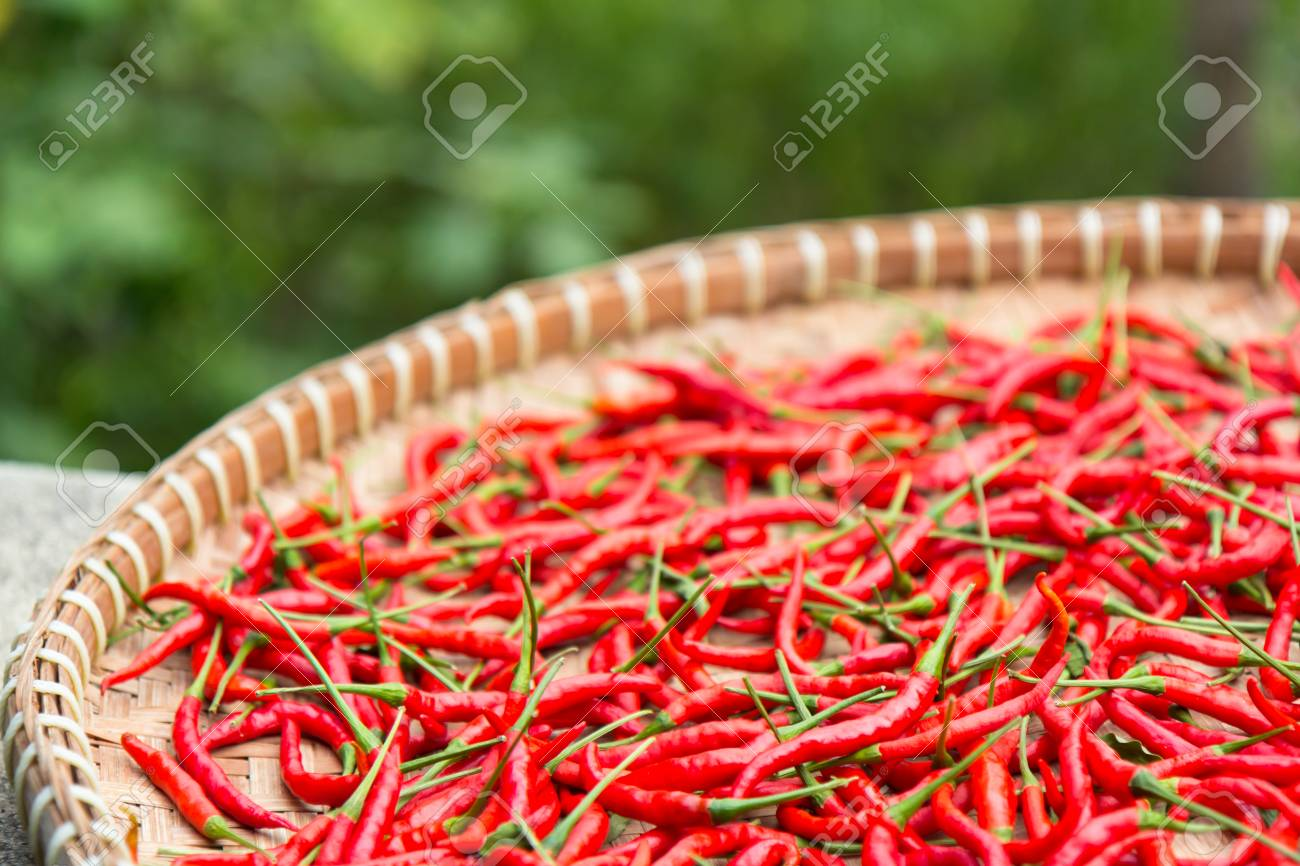 Closeup Drying Red Chilli Peppers In Thai Weave Basket At Garden