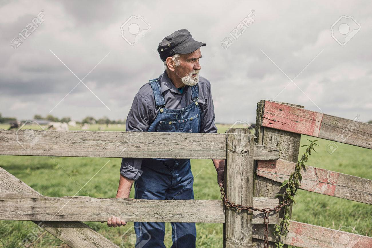 Elderly Farmer Standing Leaning On A Wooden Fence Surveying His ...