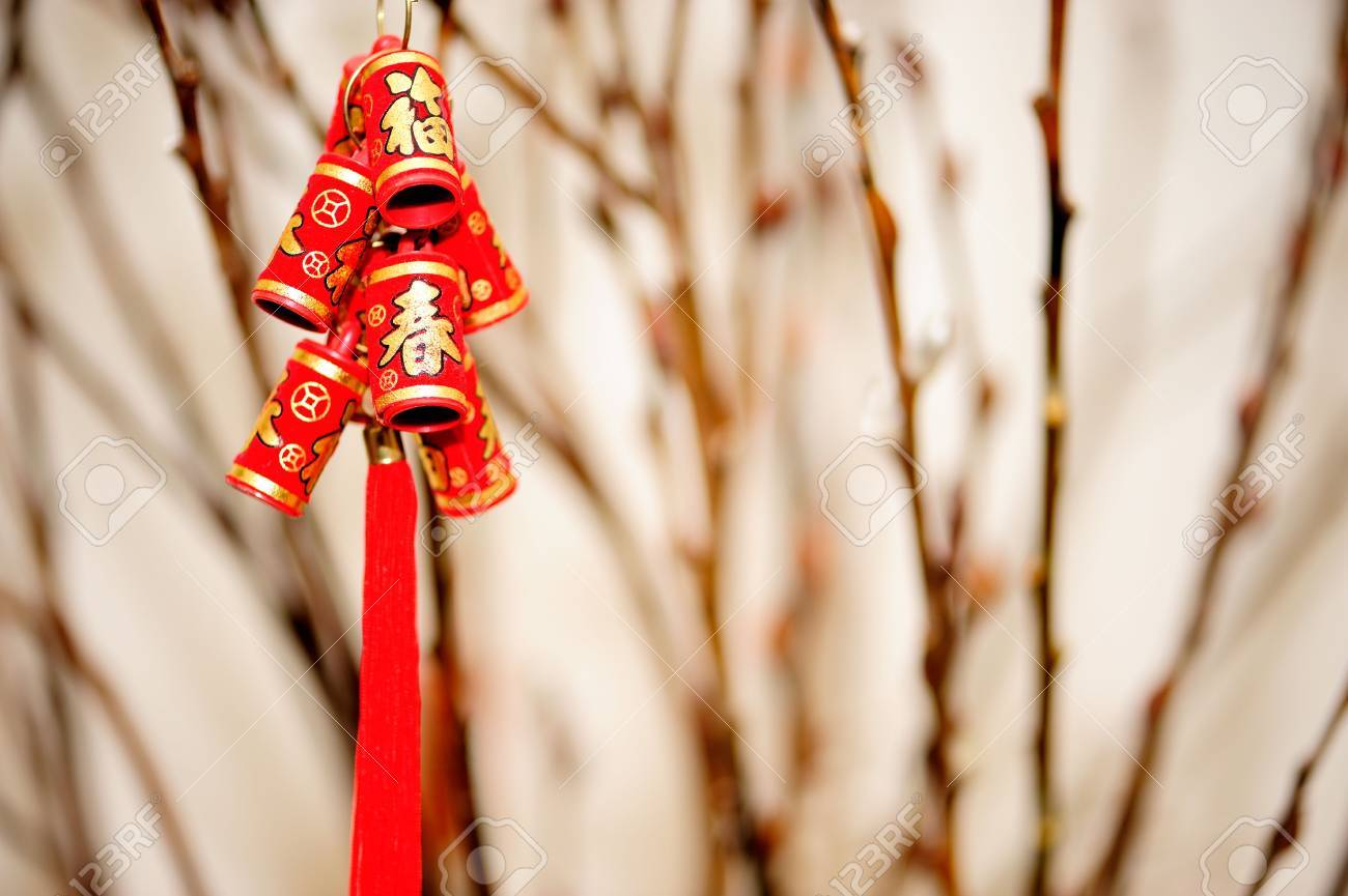 decorative firecracker with background of gingko branch  in chinese new year Stock Photo - 6486990