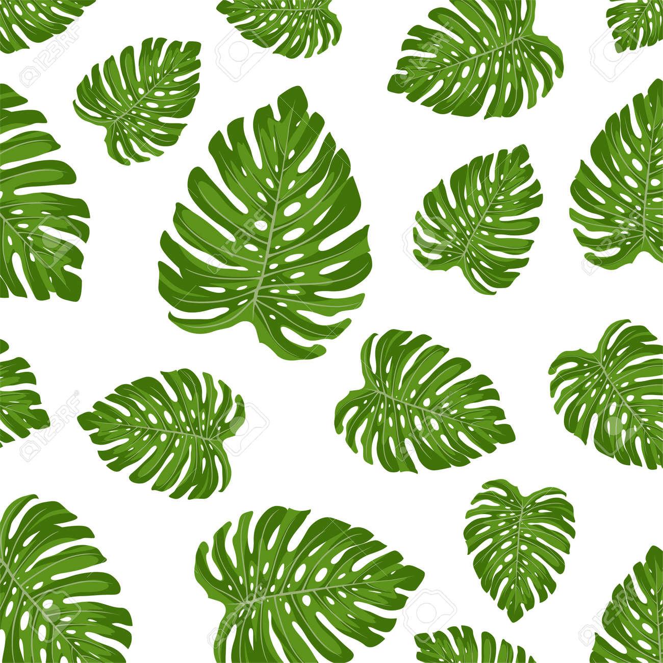 Monstera deliciosa leaf seamless pattern - 156660250