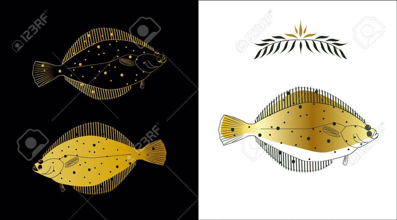 Flatfish Stock Vector - 4742511