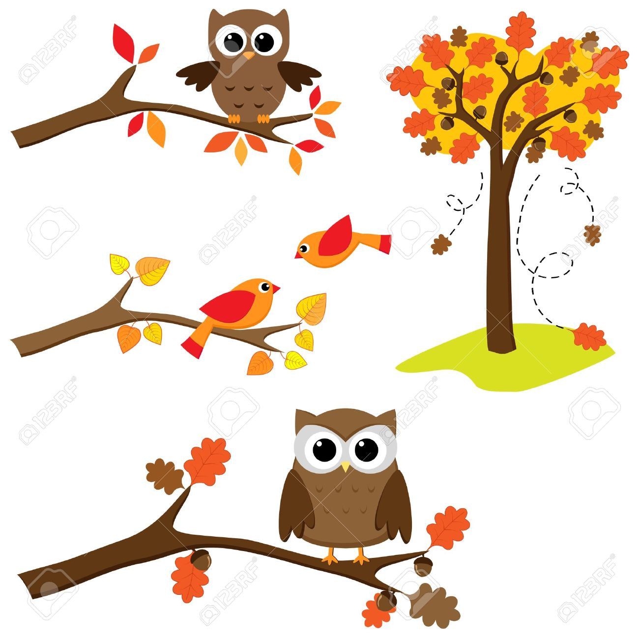 Set of autumn nature elements: branches with sitting owls and birds and . Stock Vector - 10329579