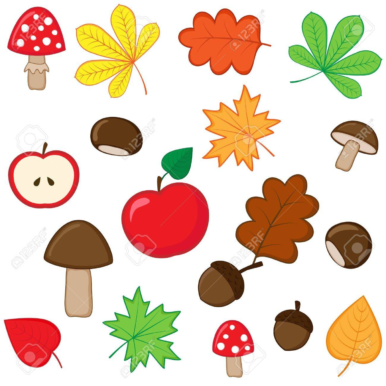 Set of autumnal nature elements - 14714597