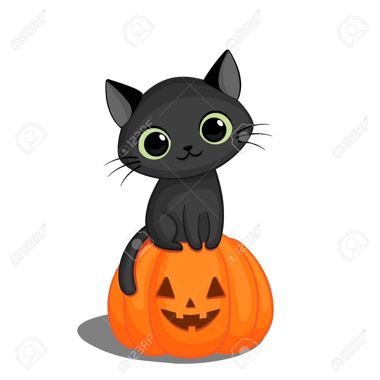 Cute Black Cat In Sitting On A Halloween Pumpkin