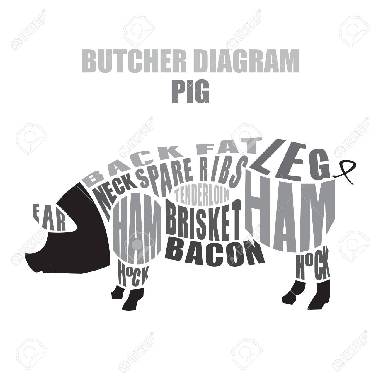 butcher diagram of pork pig cuts royalty free cliparts vectors rh 123rf com pig butchering chart pig butcher diagram poster