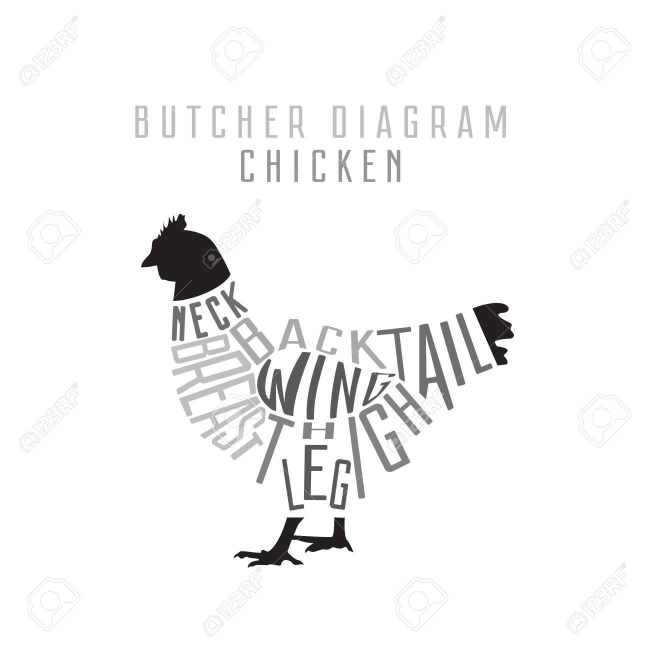 Chicken Butcher Diagram Cut Of Set Typographic Vintage Cuts Stock Vector Photo 95163750