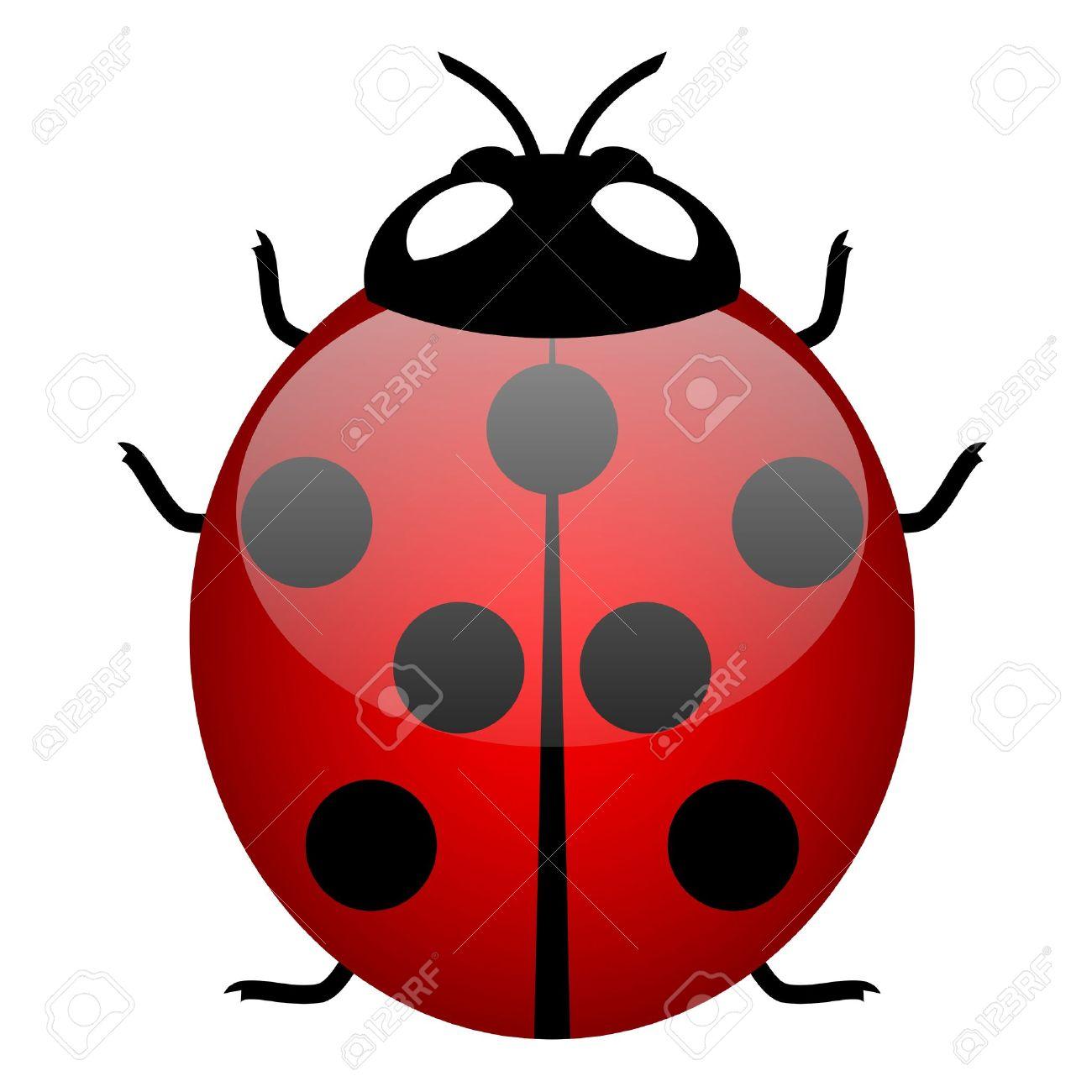 Illustration of ladybird (symbol of good luck) Stock Vector - 14646098